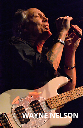 Wayne Nelson Little River Band